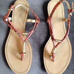 Coach Opal Snakeskin Thong Sandals US 7.5 w/ box